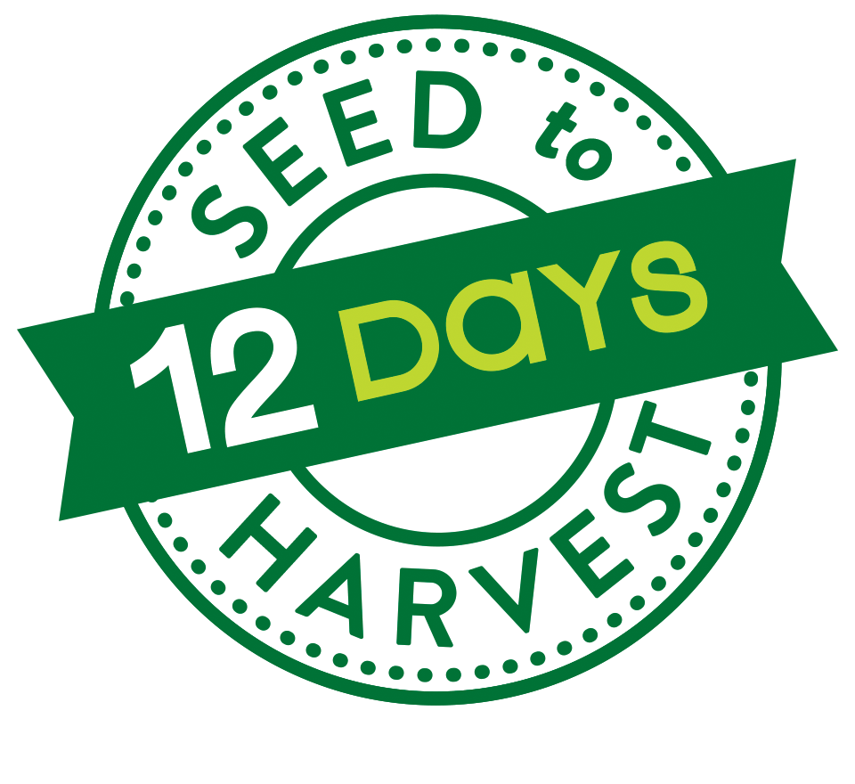 12 Days Seed to Harvest logo